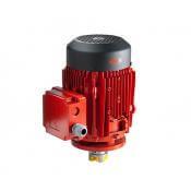 Třífázové motory FLUX DSM